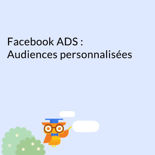 facebook-ads-audience-perso_UNE